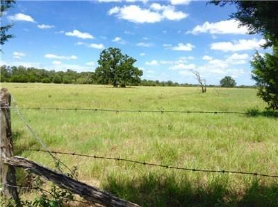 TBD Goehring Road Property Photo - Ledbetter, TX real estate listing