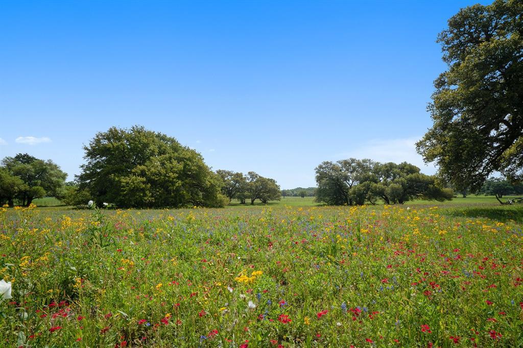 265 (B) Boulton Creek Road, Muldoon, TX 78949 - Muldoon, TX real estate listing