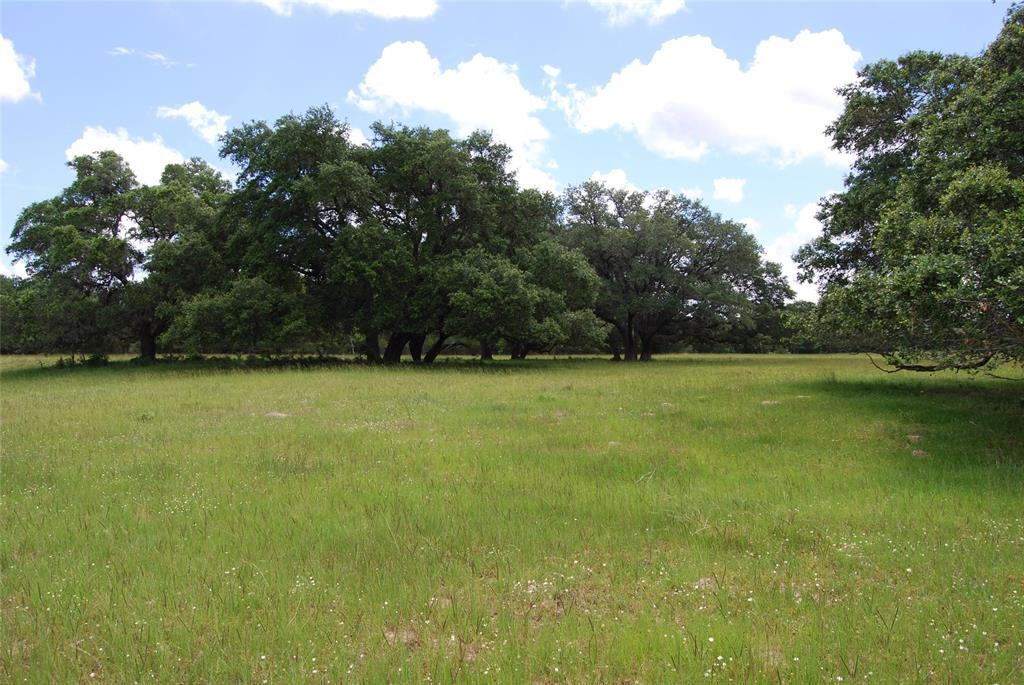 11273 Hahn Road, Sealy, TX 77474 - Sealy, TX real estate listing