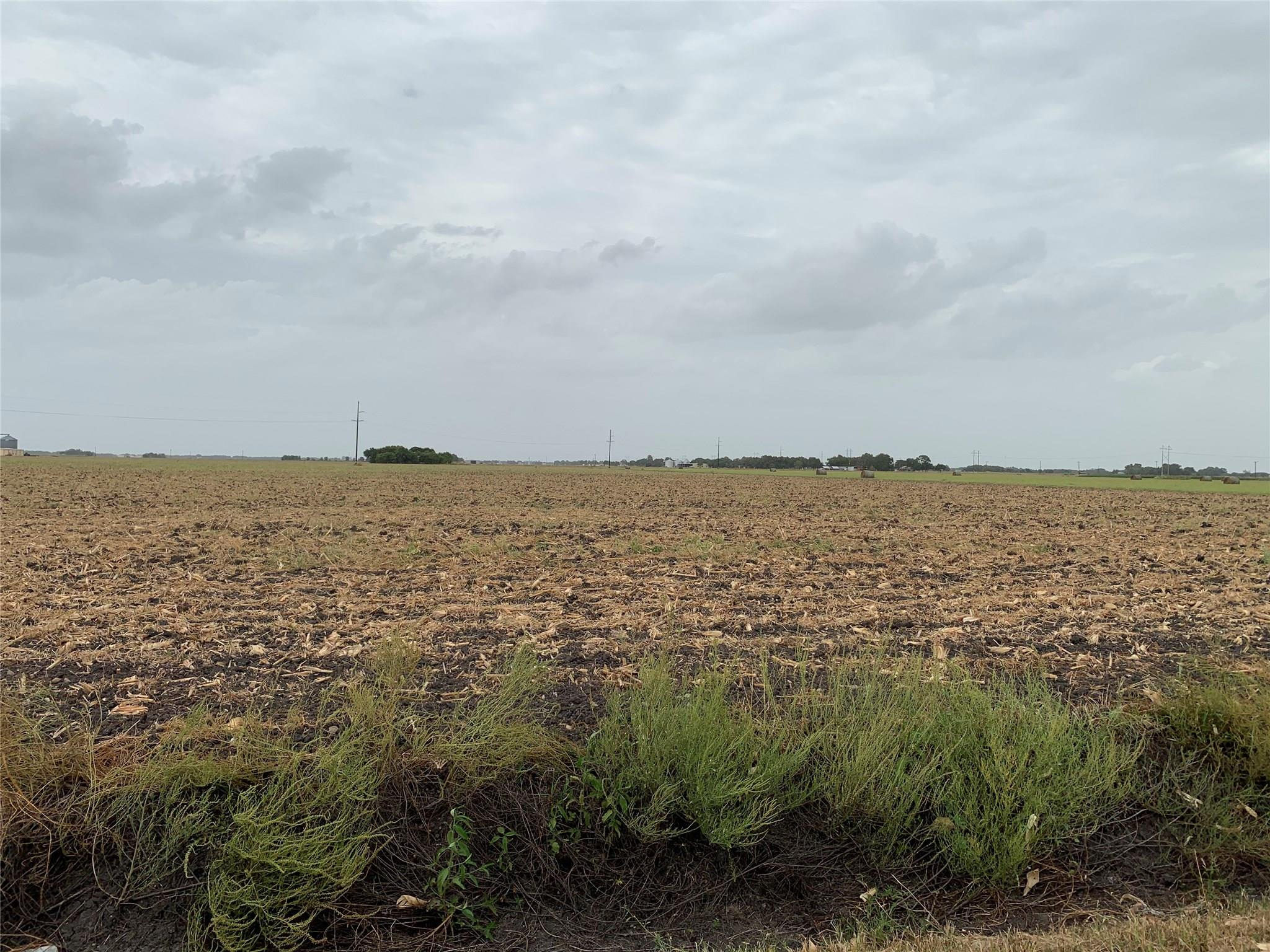0 CR 115 Property Photo - Nada, TX real estate listing