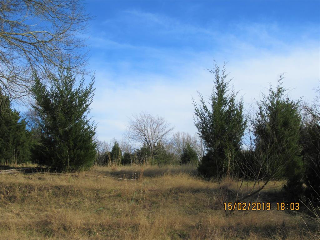TBD Lot 31 Post Oak Loop Property Photo - Thornton, TX real estate listing
