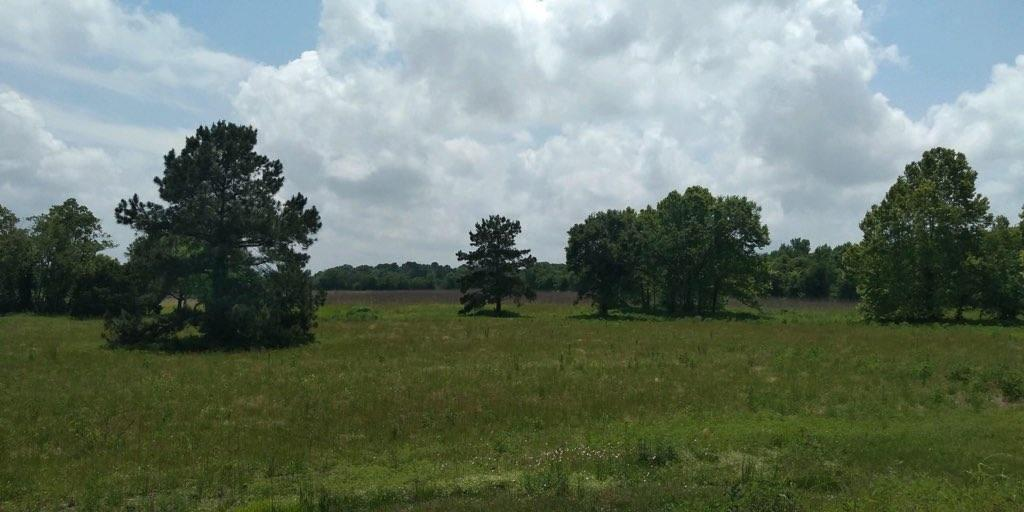 483 County Road 6111, Dayton, TX 77535 - Dayton, TX real estate listing