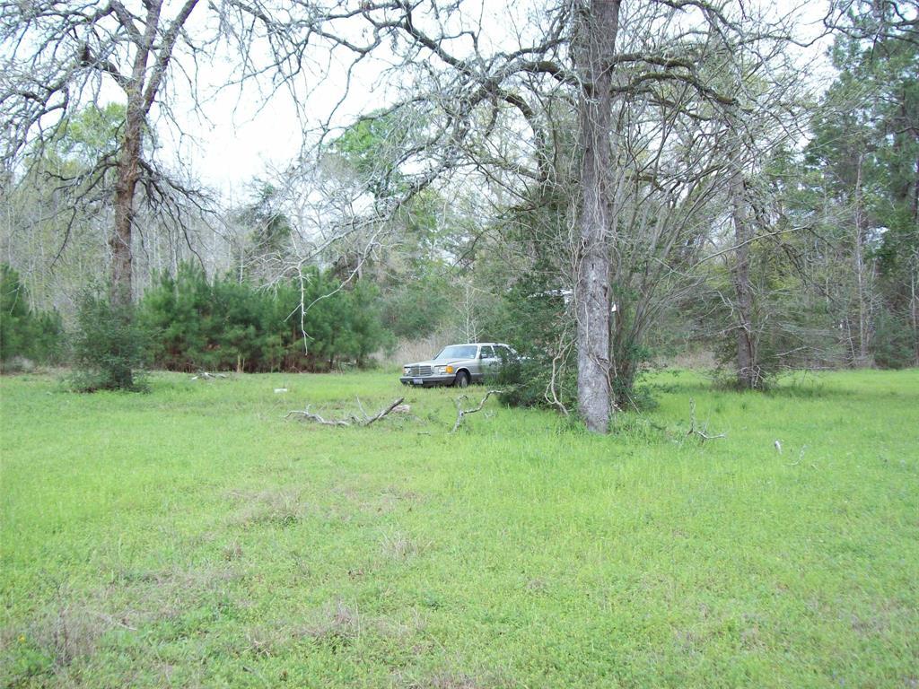 16924 Azalea Lane Property Photo - Plantersville, TX real estate listing