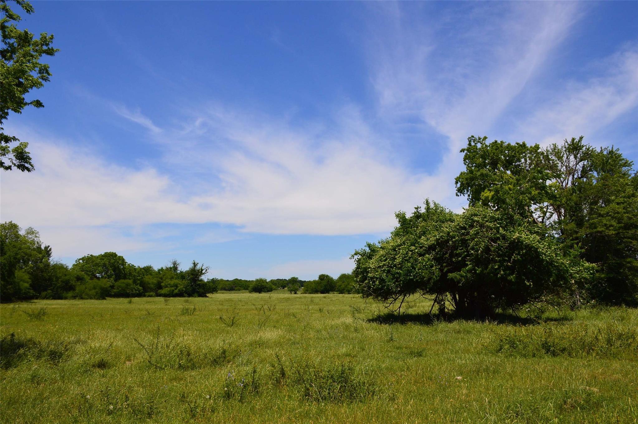 TBD (328 AC) CR 446 Property Photo - Navasota, TX real estate listing