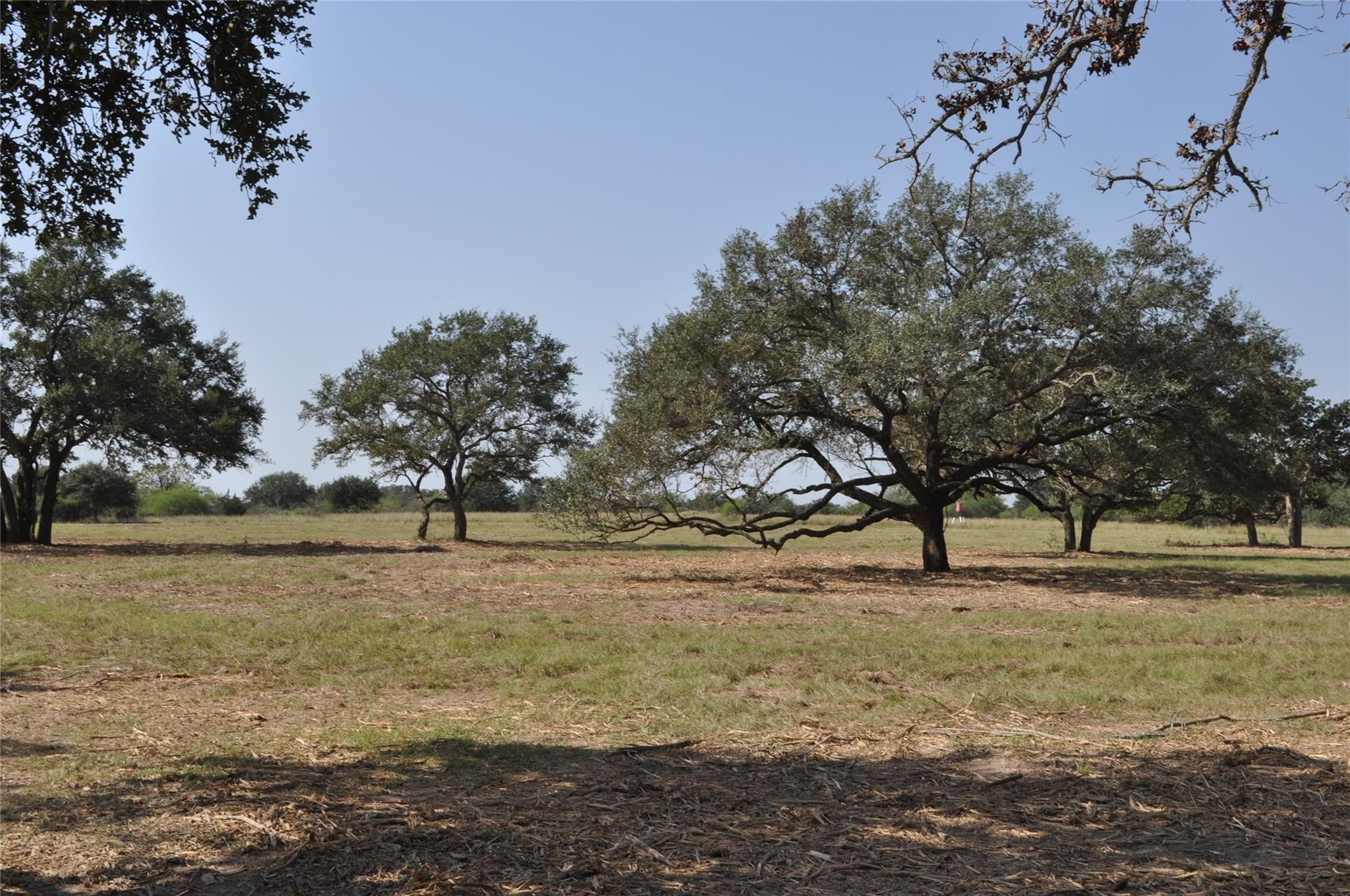 0000 Rice Road Property Photo - Yoakum, TX real estate listing
