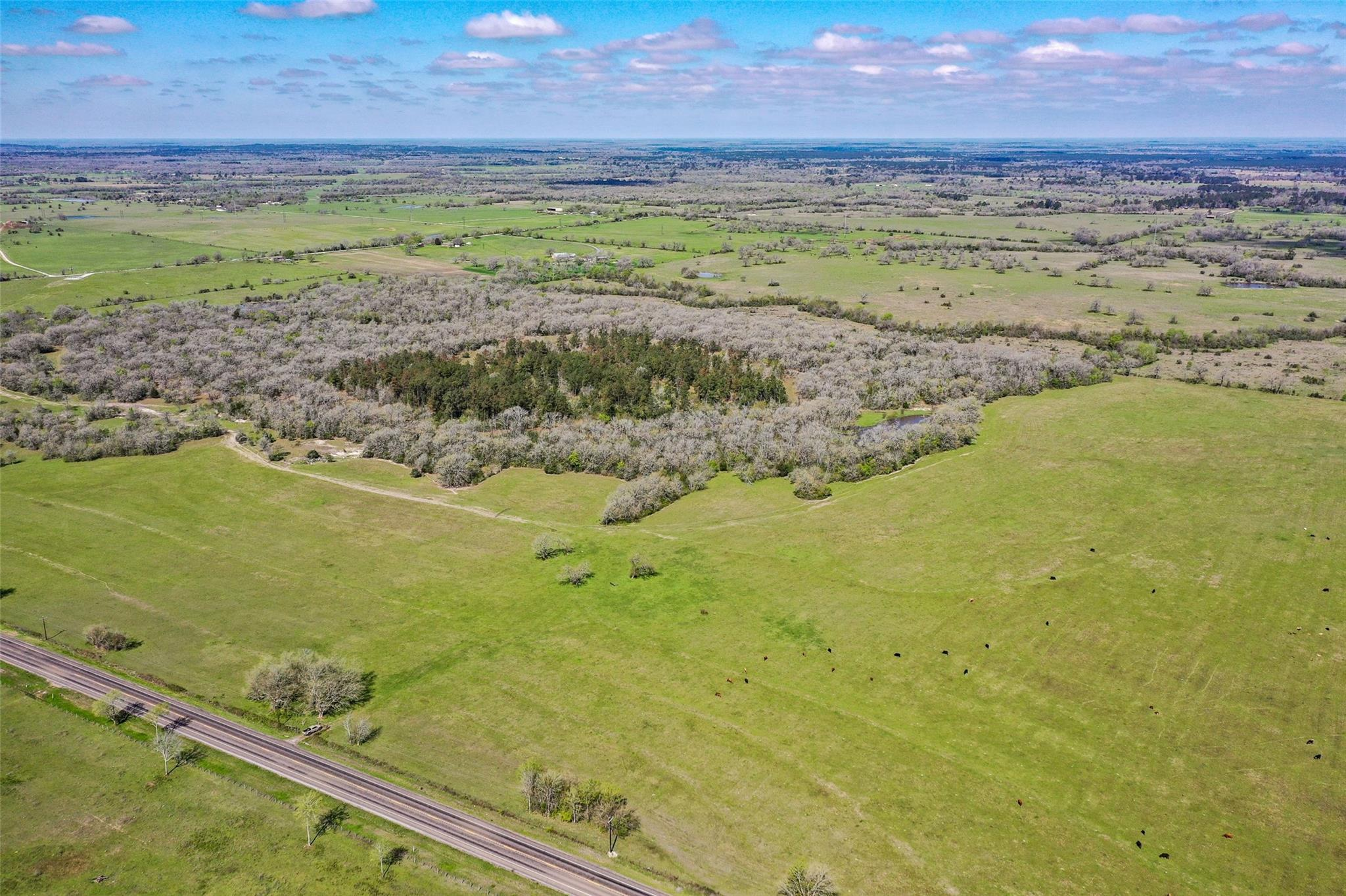249 Acres State Hwy 30 Property Photo - Bedias, TX real estate listing