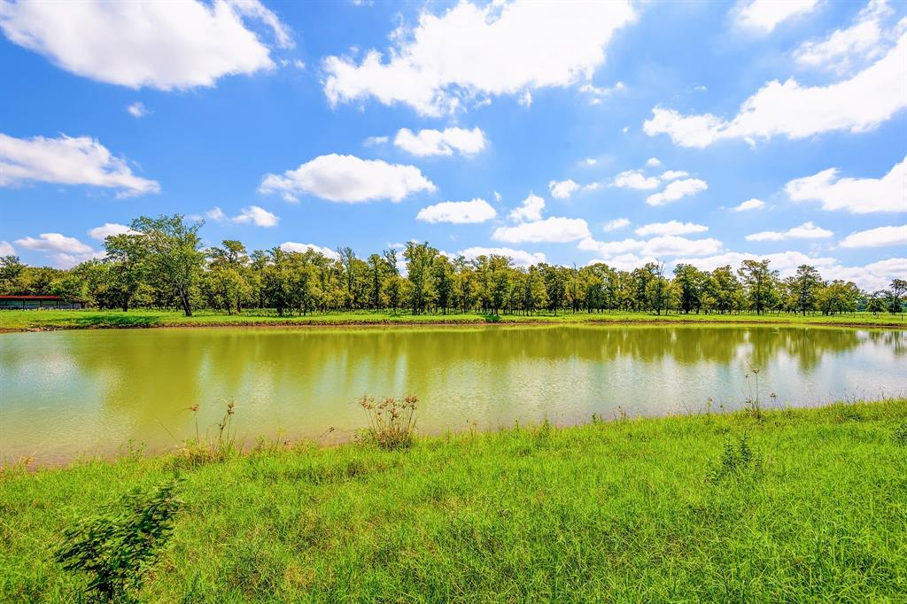 0 Guyler Road Property Photo - Simonton, TX real estate listing