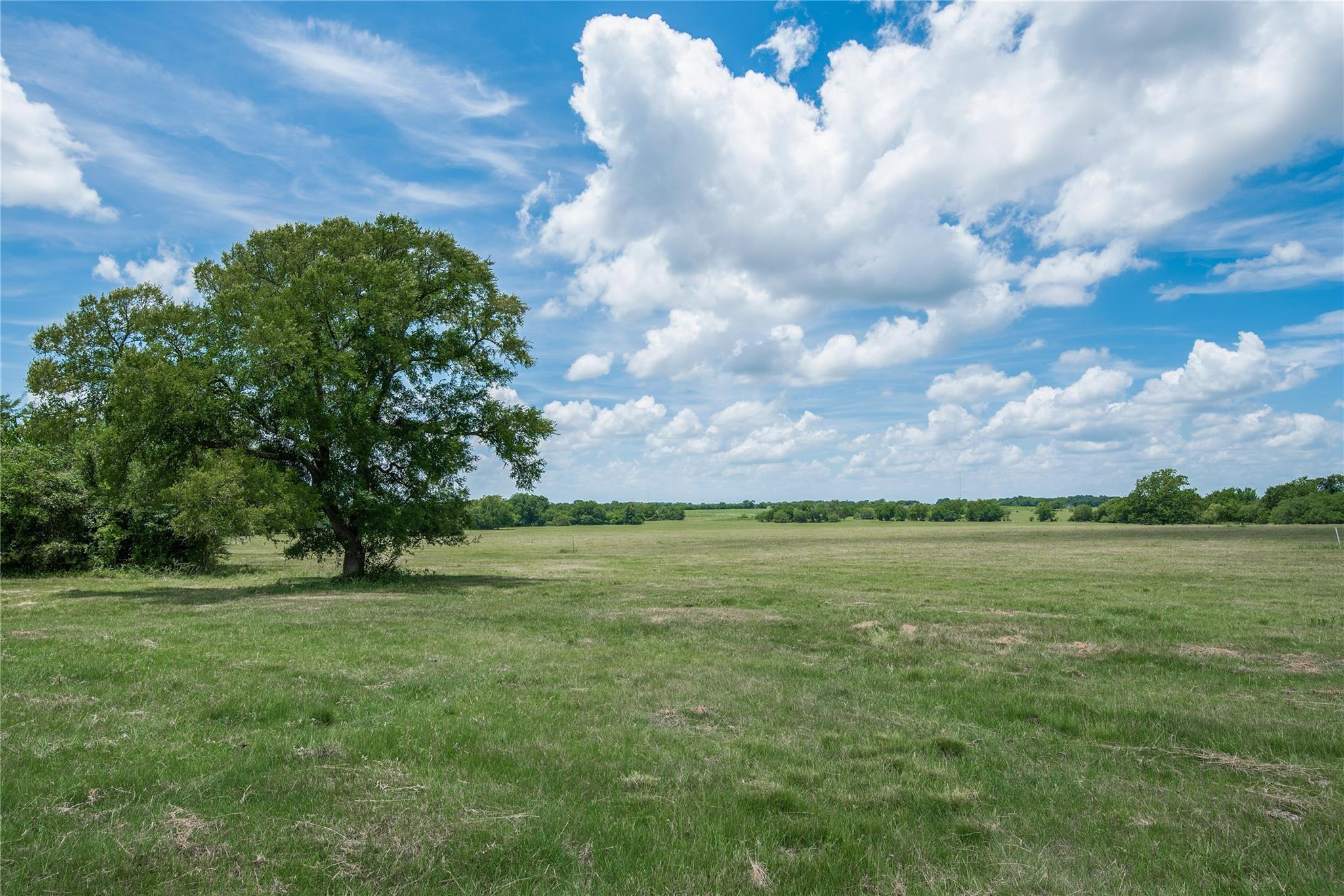 0320 County Road 446 Property Photo - Navasota, TX real estate listing