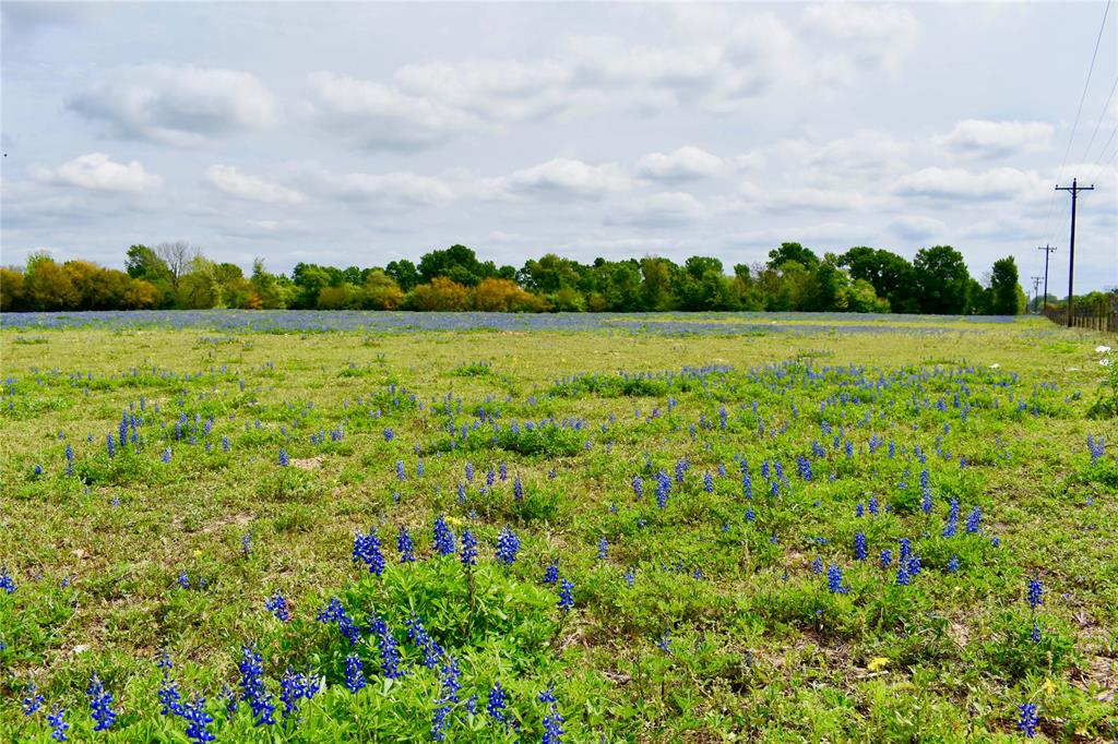39962,Mt Zion,Road, Pattison, TX 77423 - Pattison, TX real estate listing