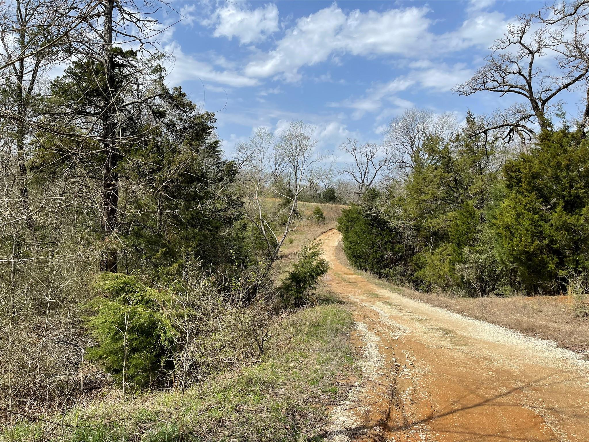 TBD FCR 690 Property Photo - Teague, TX real estate listing