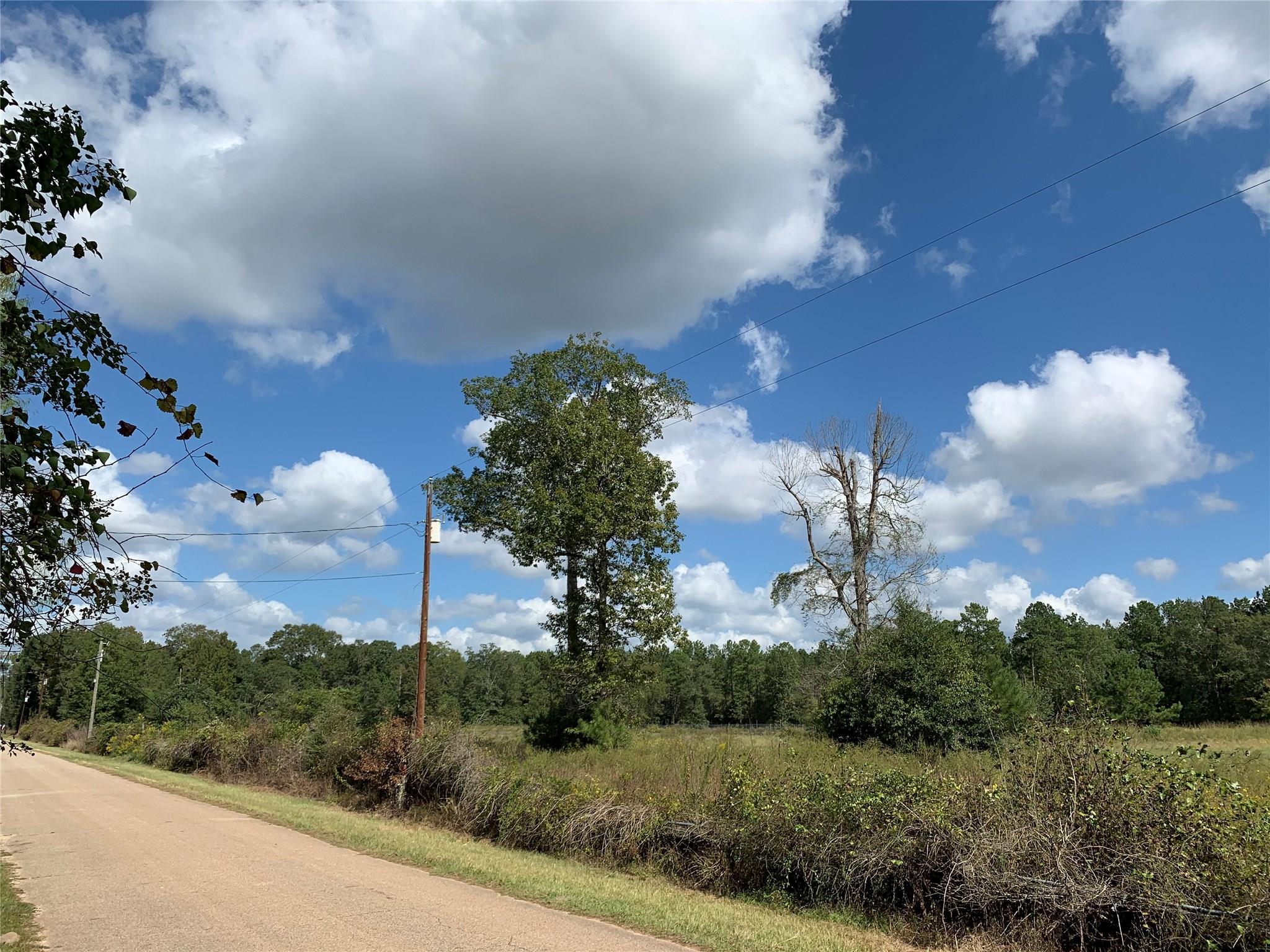 TBD Jernigan Road Property Photo - Conroe, TX real estate listing