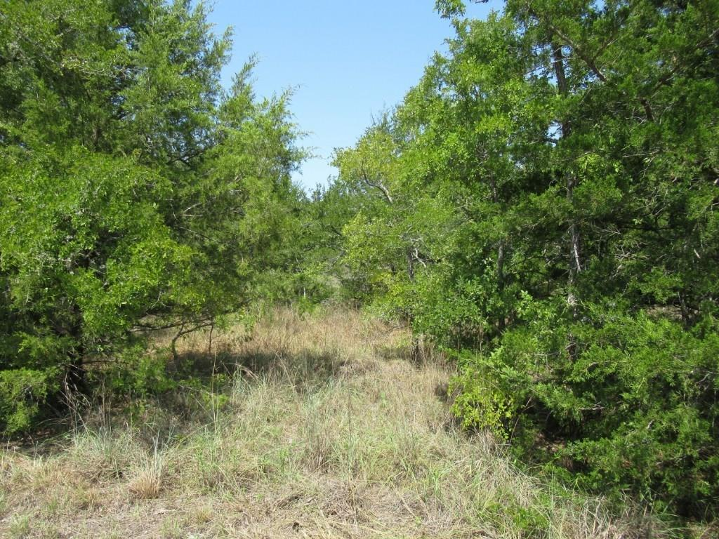 0 Pond Street, Somerville, TX 77879 - Somerville, TX real estate listing