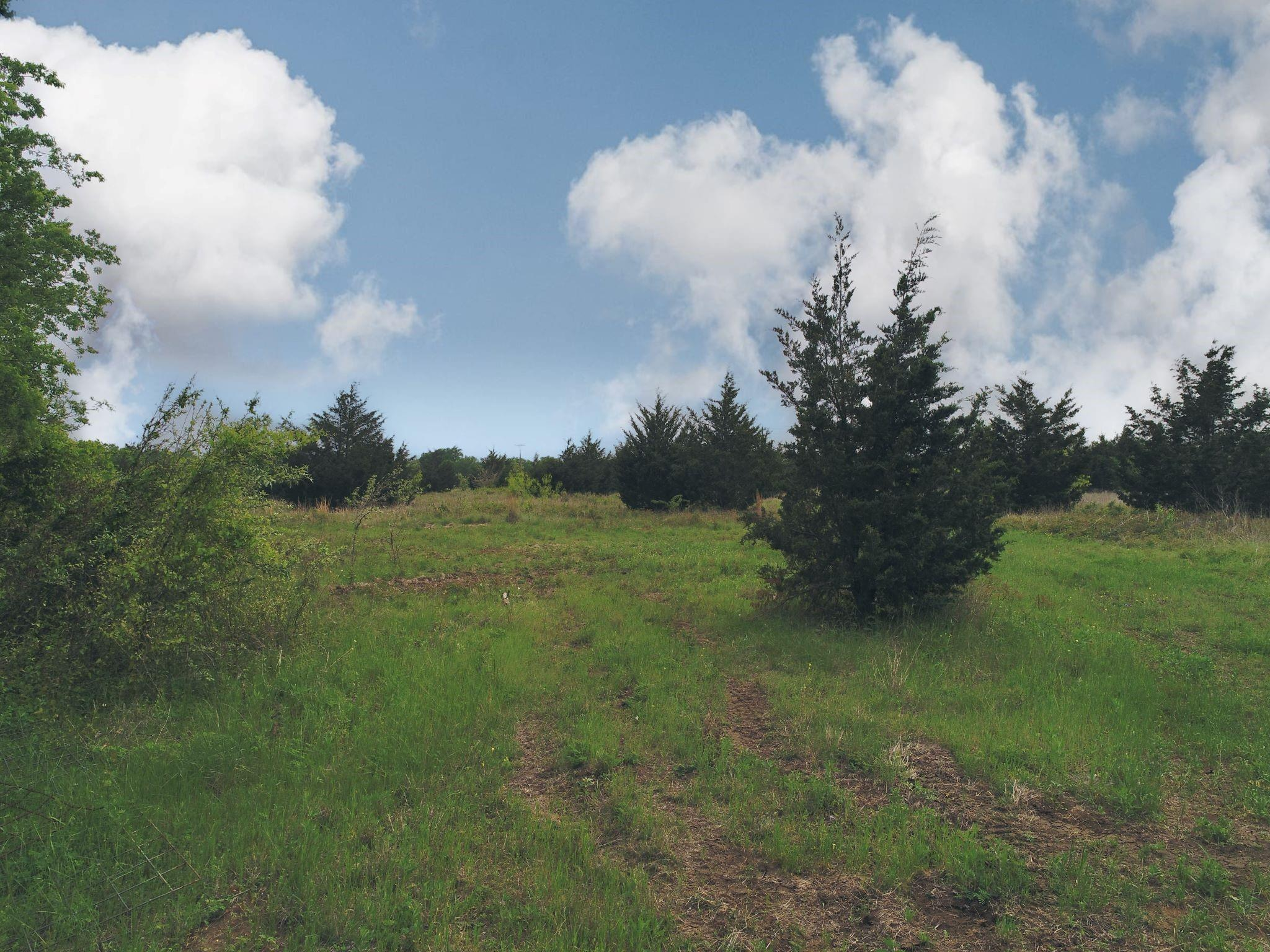 TBD-Tract 3 CR 315 Property Photo - Chriesman, TX real estate listing