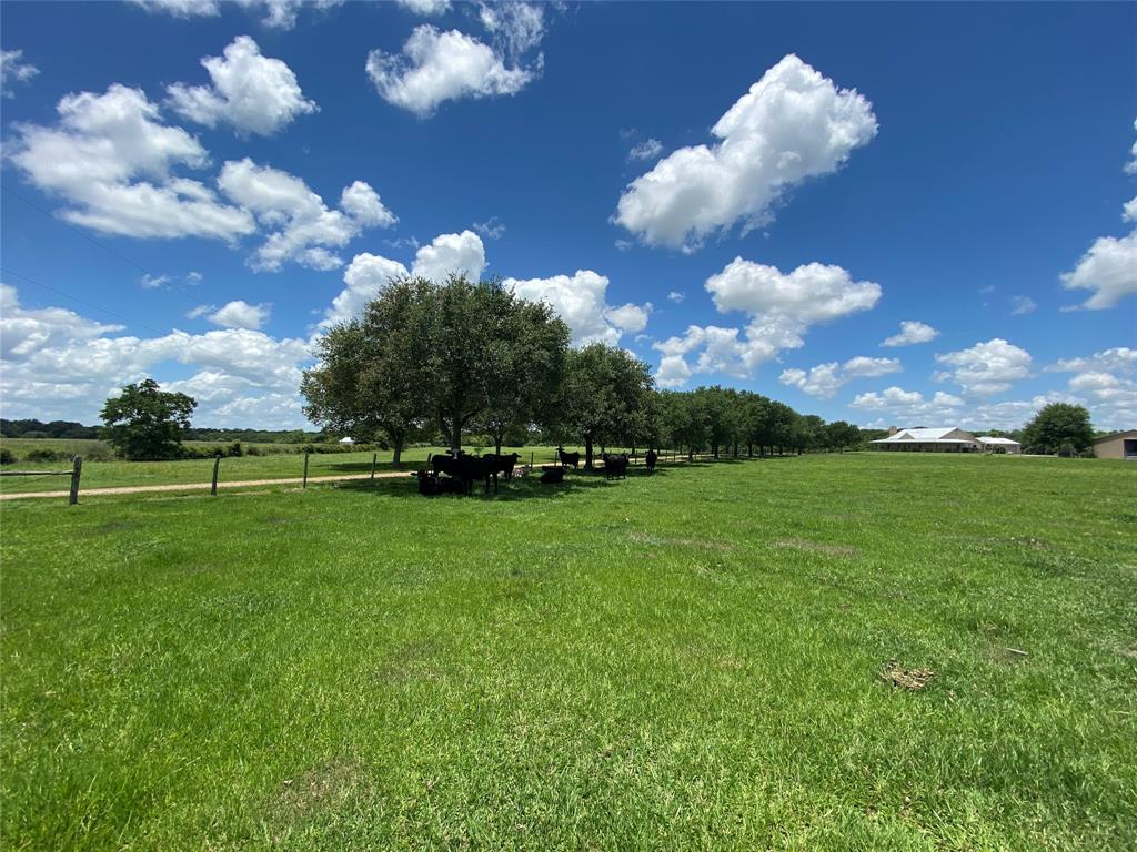 16108 Jackson Road, East Bernard, TX 77435 - East Bernard, TX real estate listing