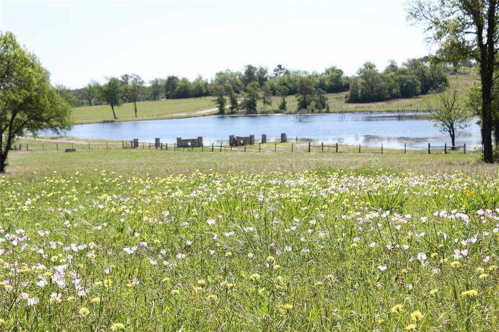 53 Pecan Hills, Plantersville, TX 77363 - Plantersville, TX real estate listing