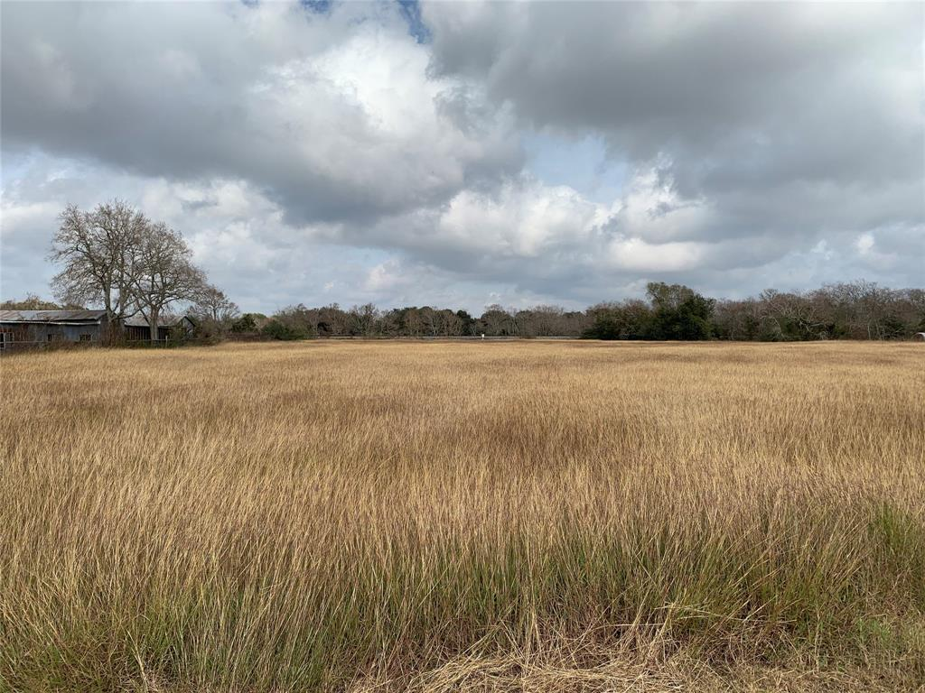 0 FM 616 ( 2.96ac+/-) Property Photo - Blessing, TX real estate listing