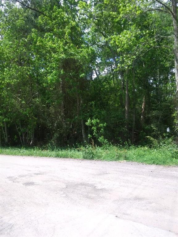 Lot 146 Allendale 02, Conroe, TX 77302 - Conroe, TX real estate listing