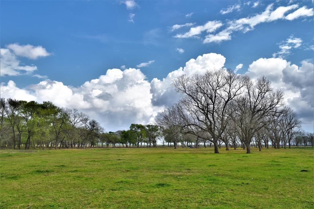 000 County Road 464 Property Photo - Wharton, TX real estate listing