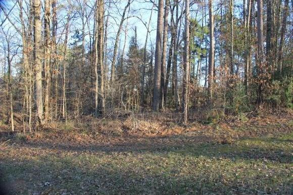 0 Woodland Oaks Drive Property Photo