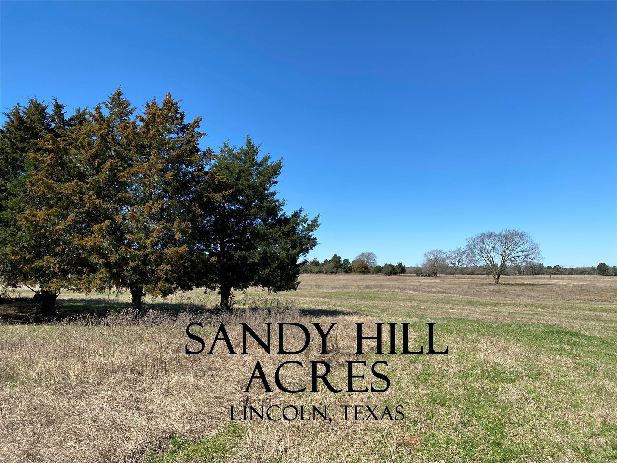0 County Road 107 Property Photo - Lincoln, TX real estate listing