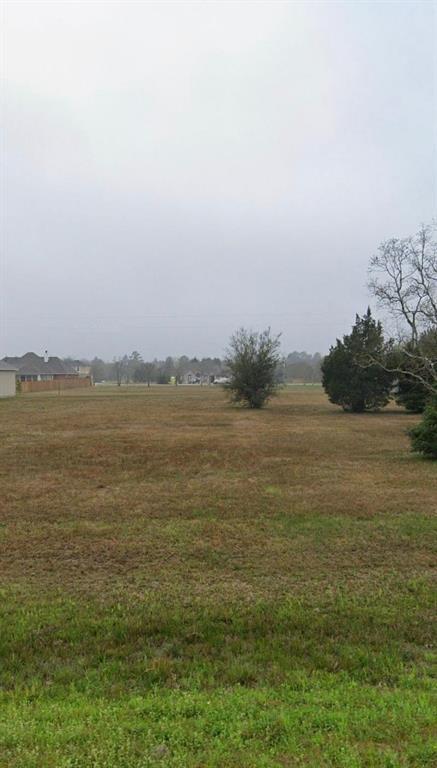 2143 Blue Jay Way, Pattison, TX 77423 - Pattison, TX real estate listing