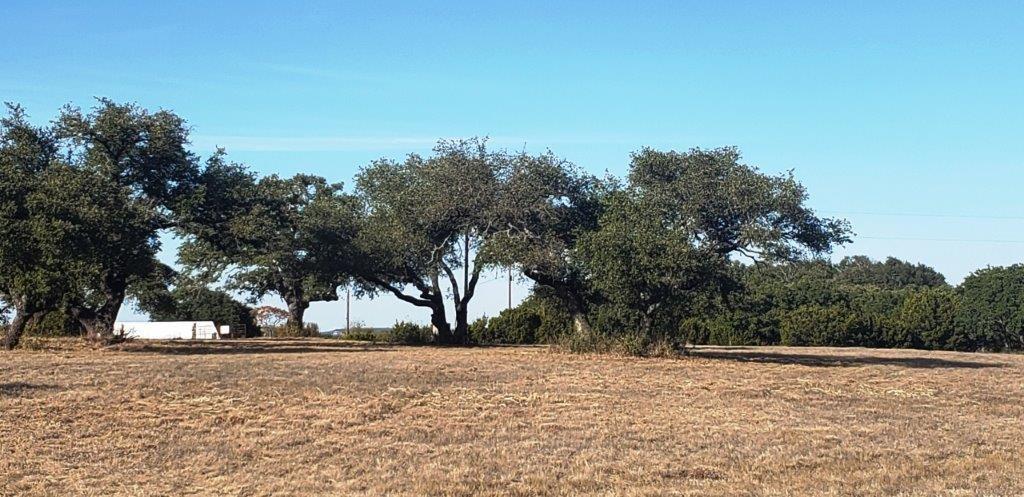 00 County Road 1255 Tract 6, Lampasas, TX 76550 - Lampasas, TX real estate listing