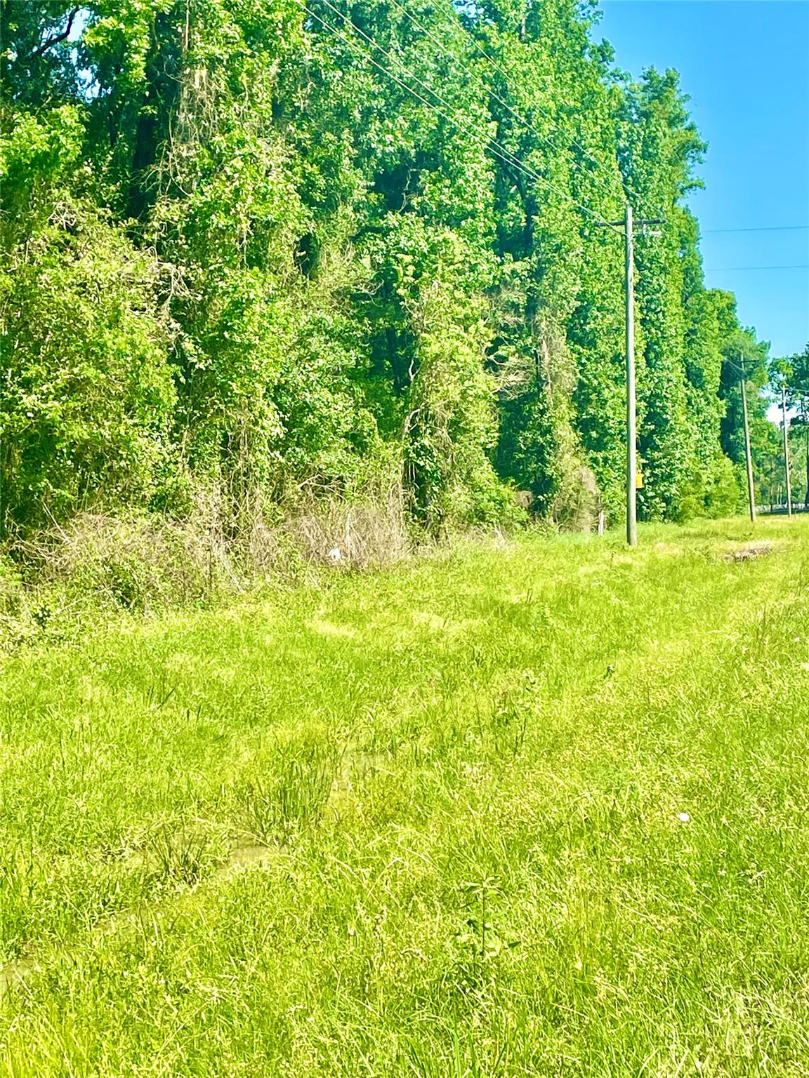 TBD County Road 2058 Tanner Road Property Photo - Hull, TX real estate listing