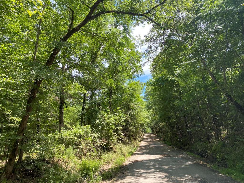 0 Mill Creek Road Property Photo - Huntington, TX real estate listing