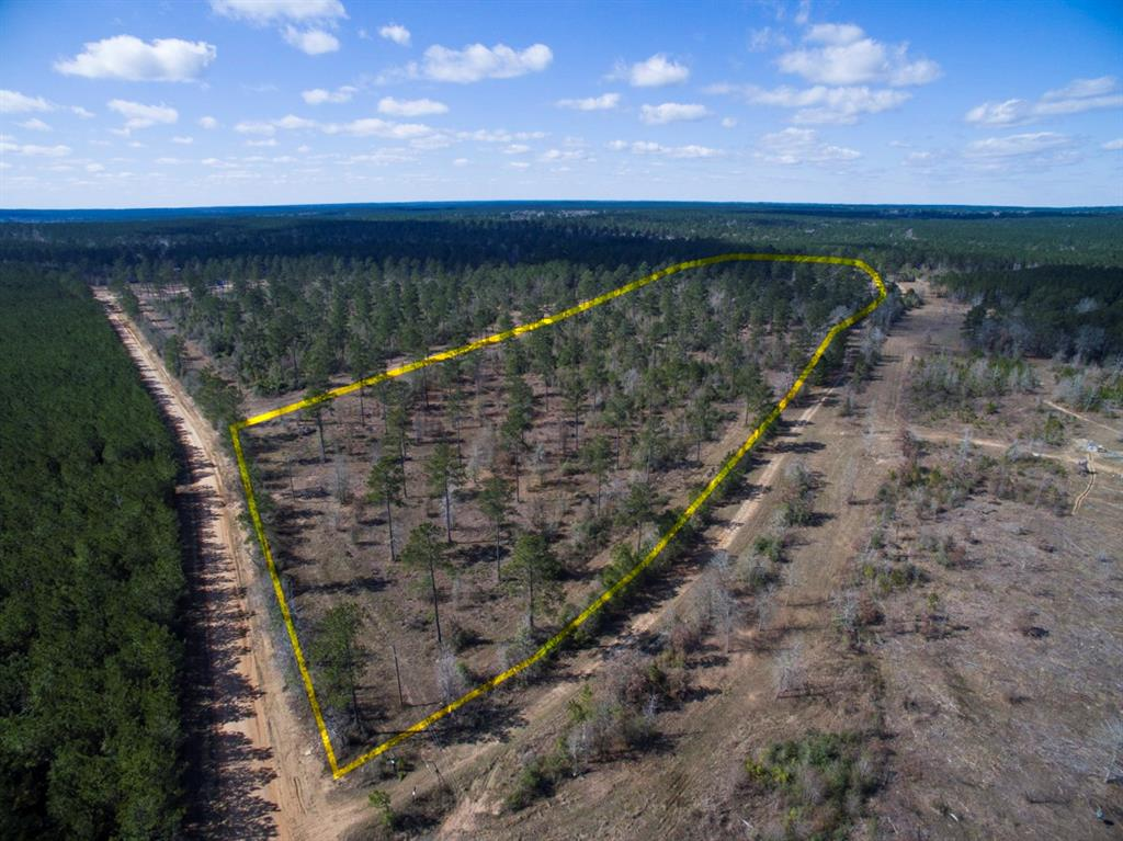 00 Felix Currie Road Property Photo - Oakhurst, TX real estate listing