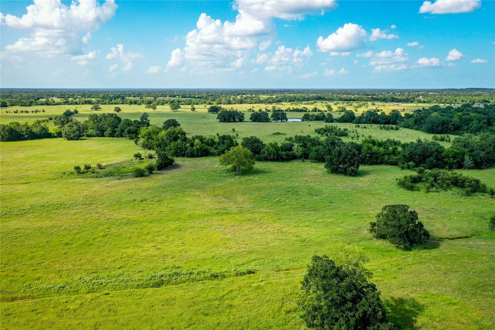 22130 FM 2620 Property Photo - Bedias, TX real estate listing