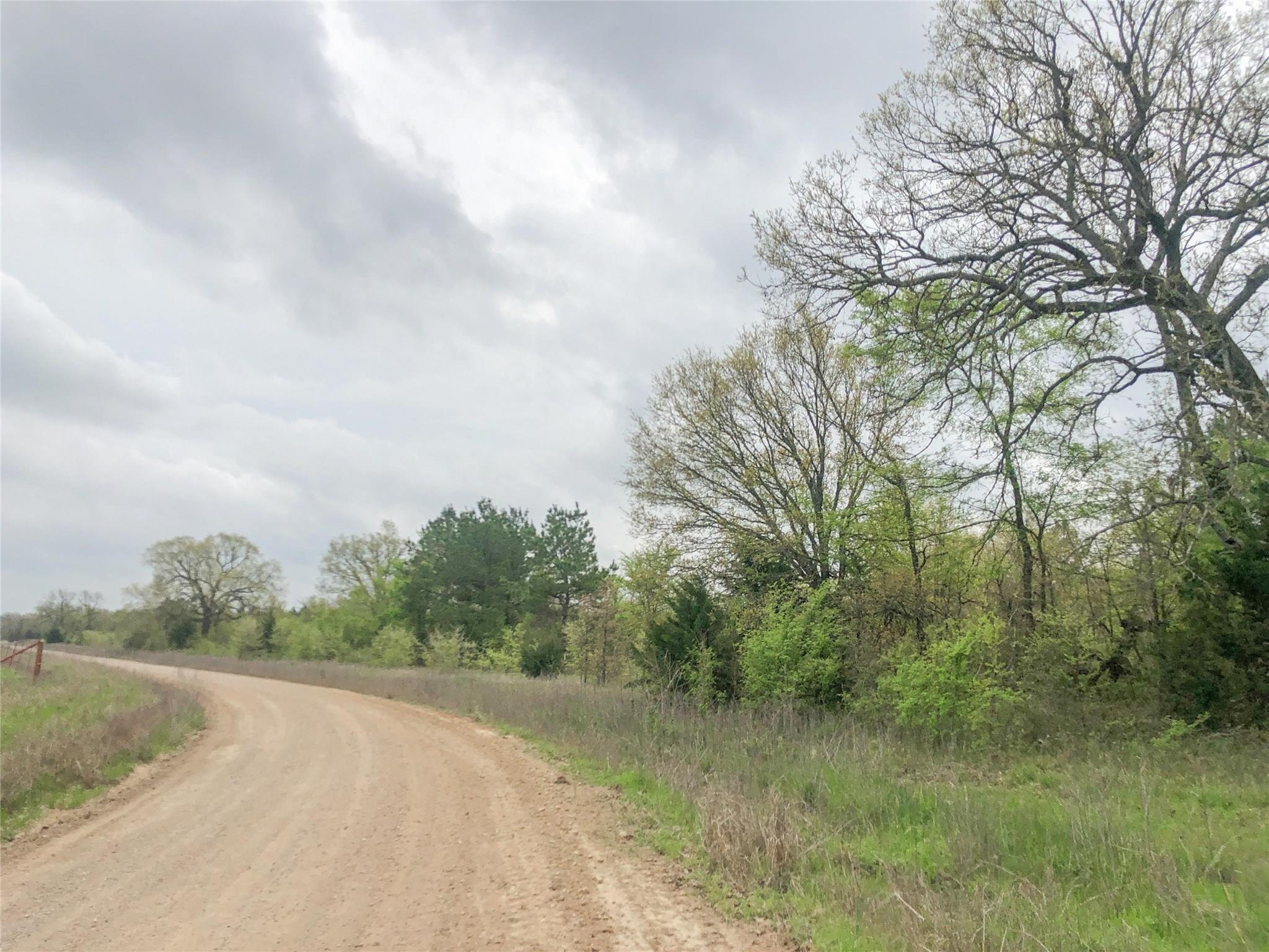 0 CR 4640 Property Photo - Avery, TX real estate listing
