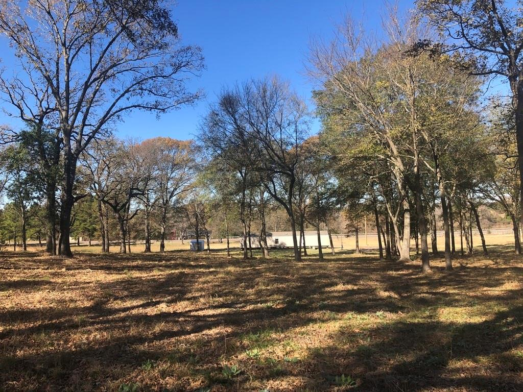 767 W Hwy 79 Property Photo - Buffalo, TX real estate listing