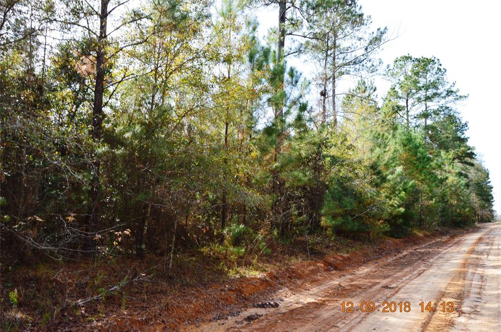 TBD R 2678, Rye, TX 77369 - Rye, TX real estate listing