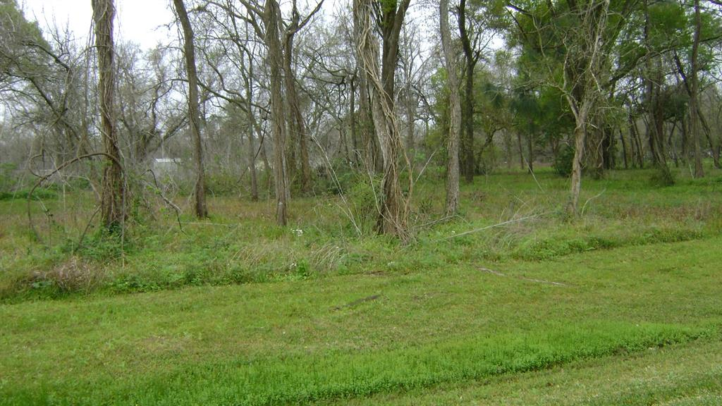 0 Harrison Road, Jones Creek, TX 77541 - Jones Creek, TX real estate listing