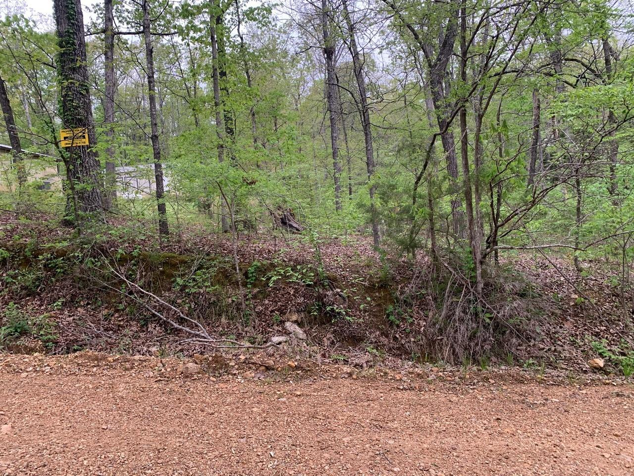 0 Lakeside Trail Property Photo - Other, AR real estate listing