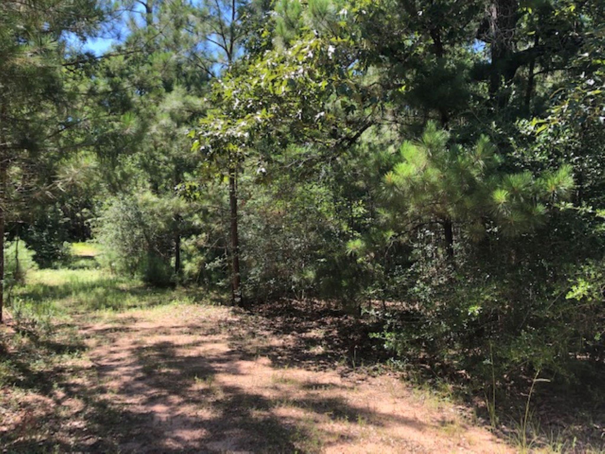 0 Nichols Sawmill Road Property Photo - Magnolia, TX real estate listing