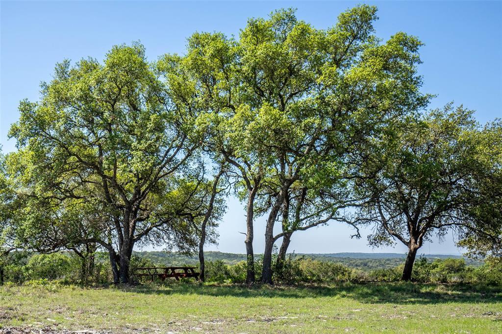 TBD CR 2410 Property Photo - Hondo, TX real estate listing