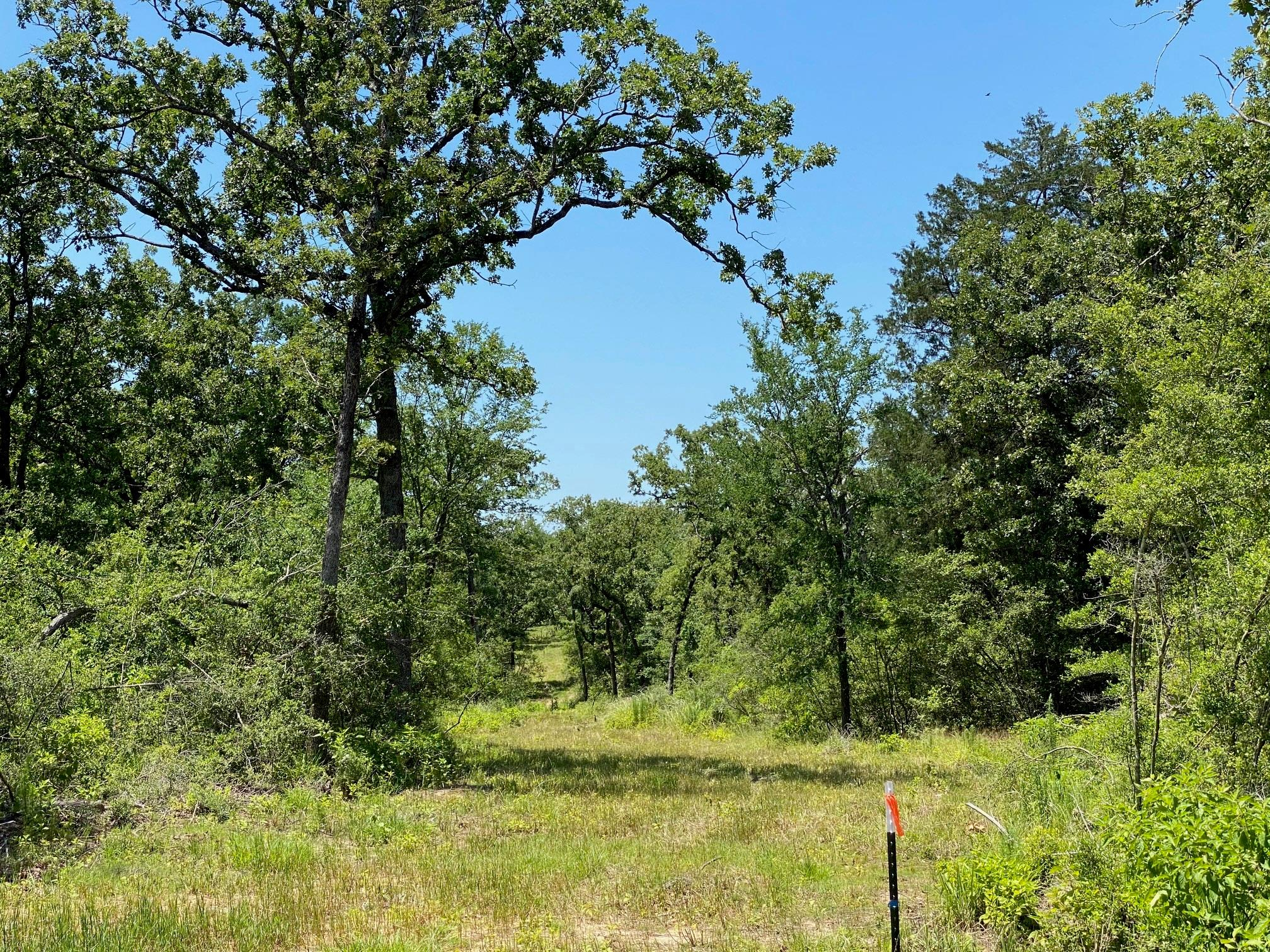 4718 Cr 4263 Property Photo