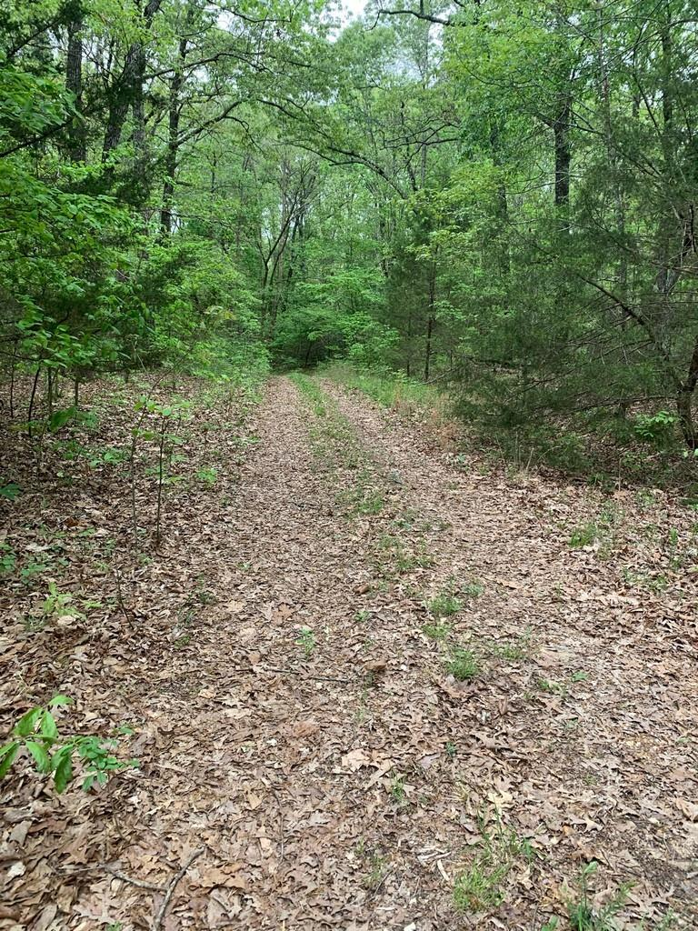 0 Durre Drive Property Photo - Other, AR real estate listing