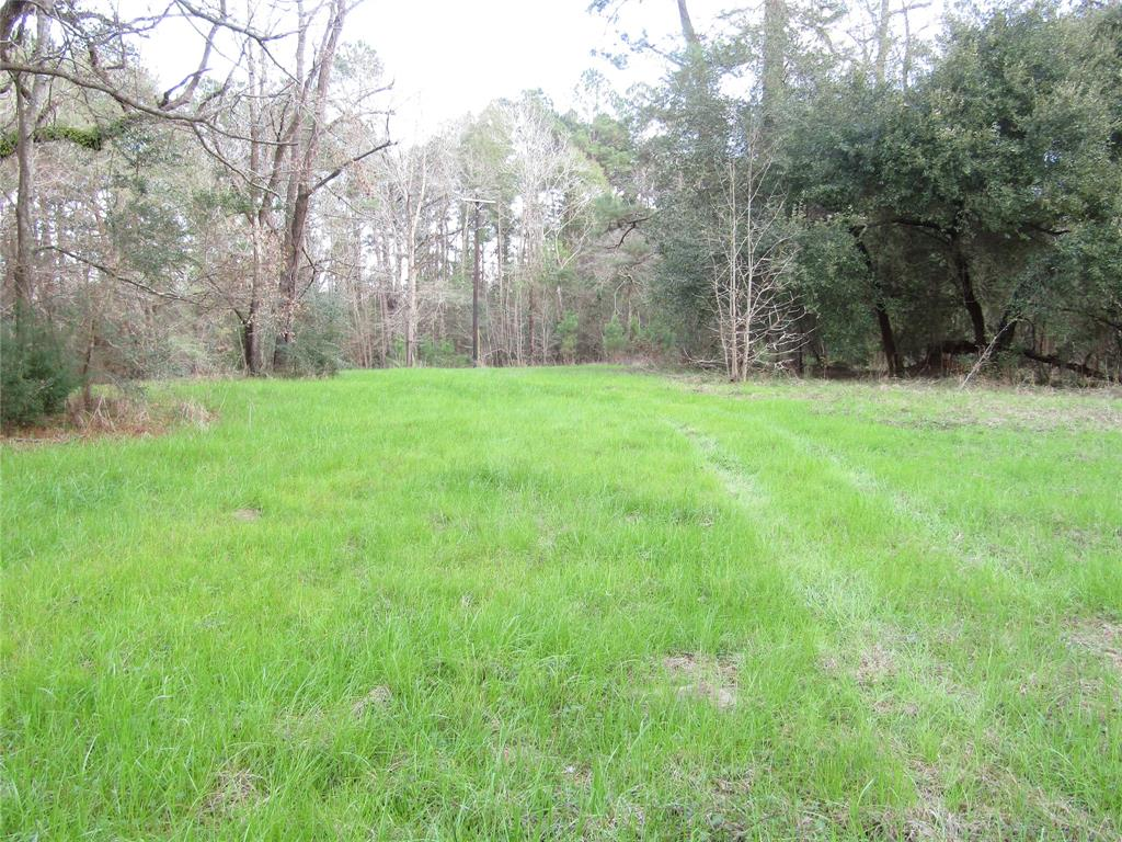 1106 County Rd 2375 Pump St Road, Chester, TX 75936 - Chester, TX real estate listing