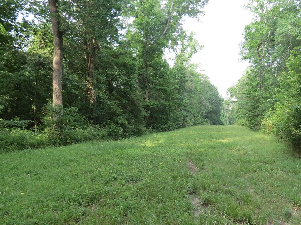 0 Westridge Drive W Property Photo - Huntsville, TX real estate listing
