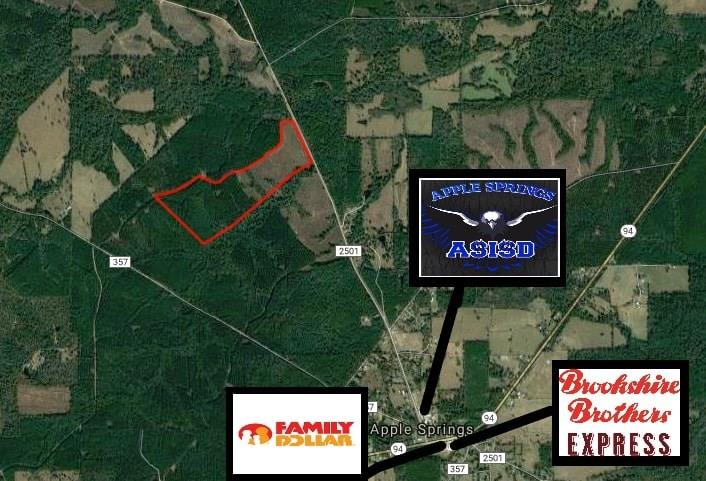TBD FM 2501, Apple Springs, TX 75926 - Apple Springs, TX real estate listing