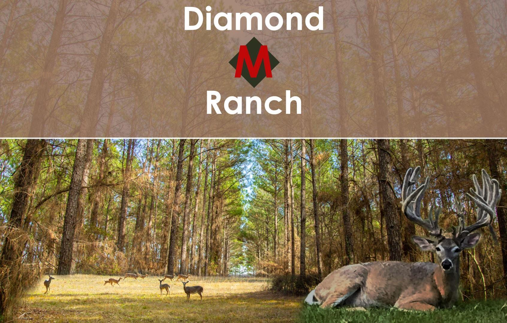 74 East Fork Drive Property Photo - Huntsville, TX real estate listing