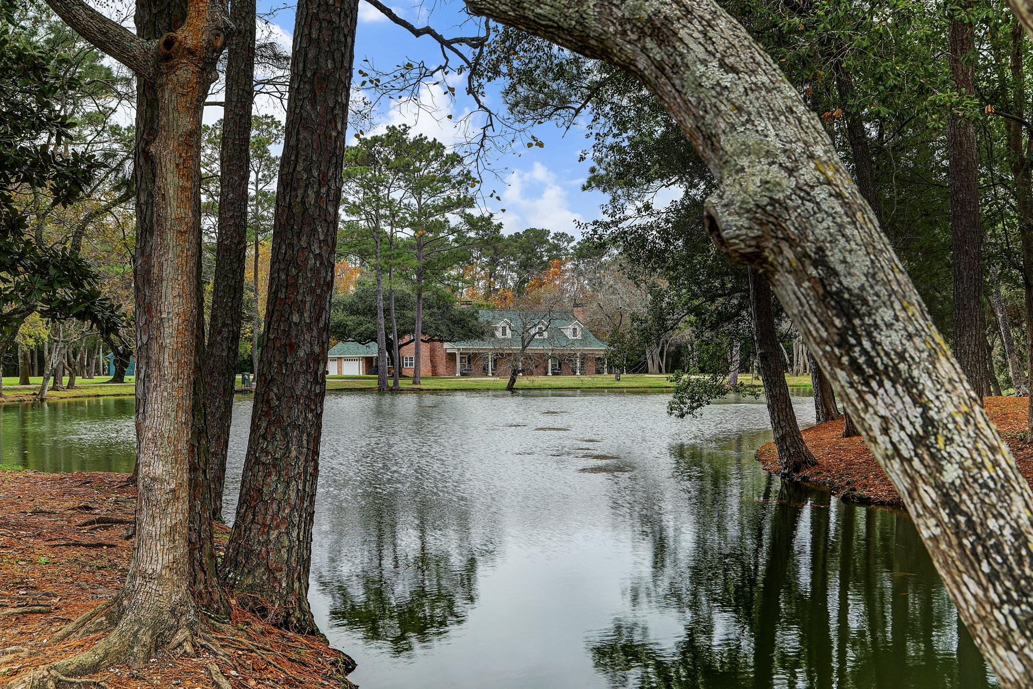 1724 Oleander Drive Property Photo - Dickinson, TX real estate listing
