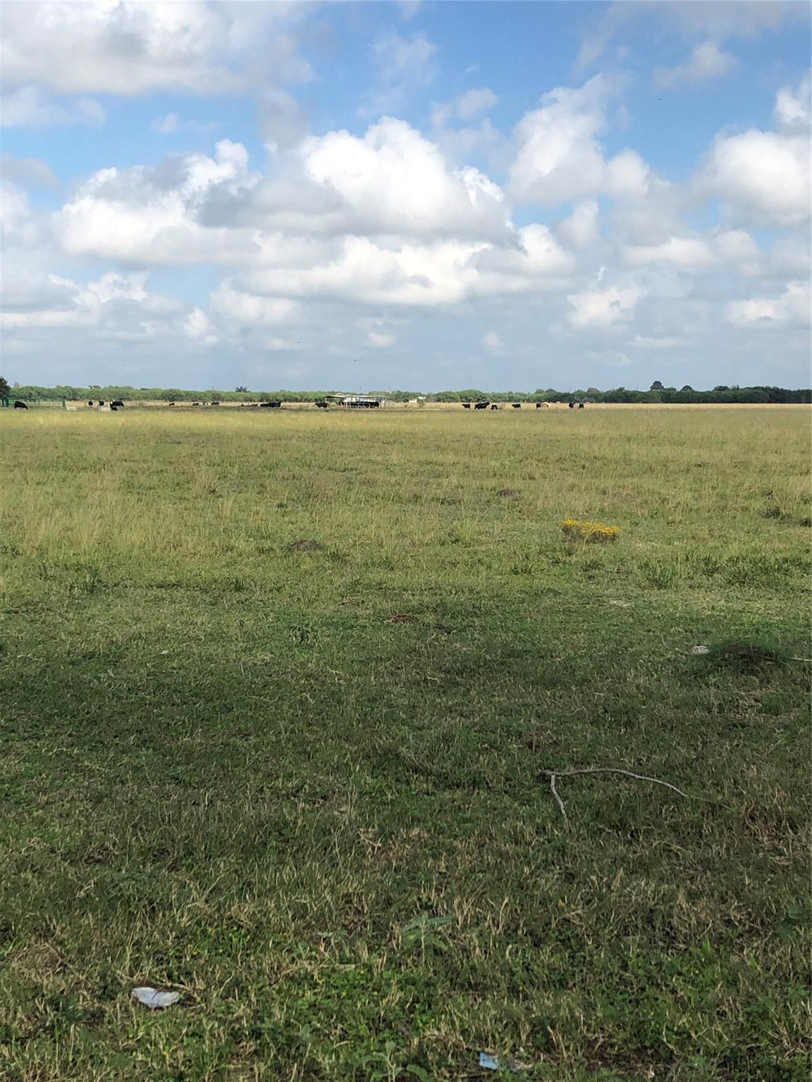 00 Richard Frey Road Property Photo - Hempstead, TX real estate listing