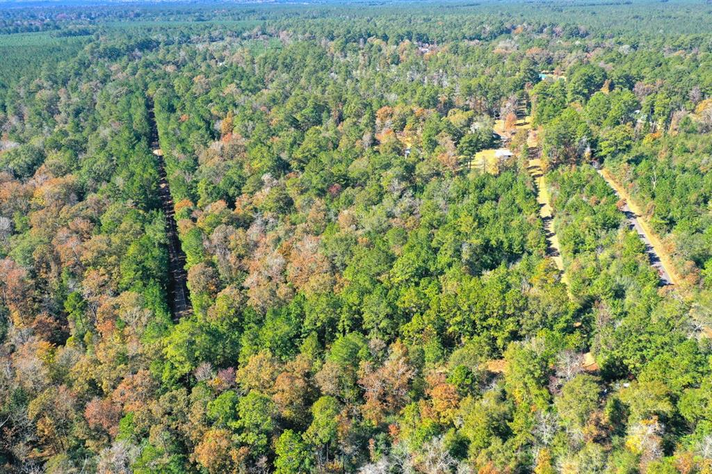 0 Lilley Road, Leggett, TX 77350 - Leggett, TX real estate listing
