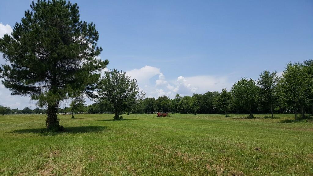 3525 Katy Hockley Road Property Photo - Katy, TX real estate listing