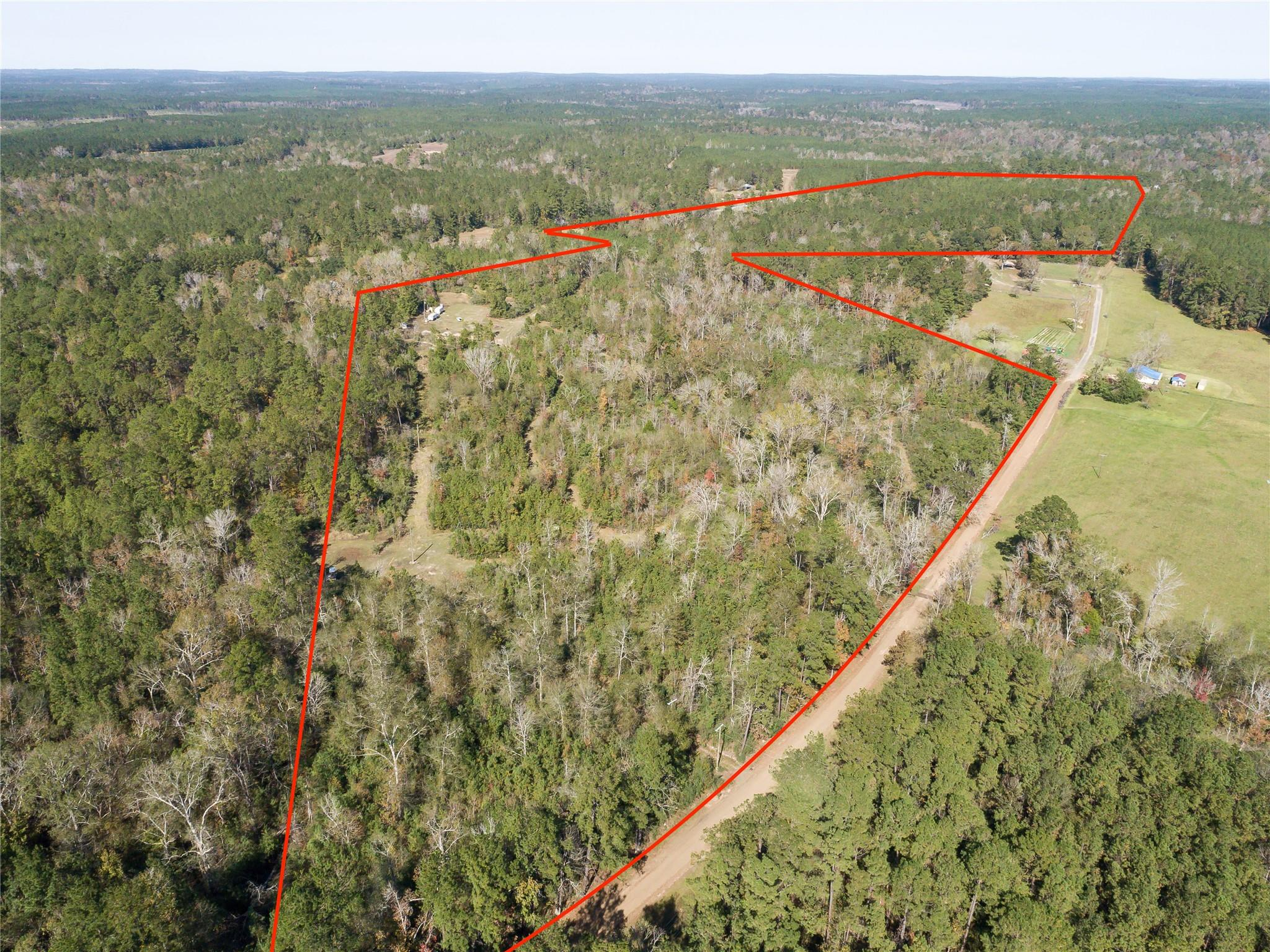 TBD County Rd 2088 Property Photo - Burkeville, TX real estate listing
