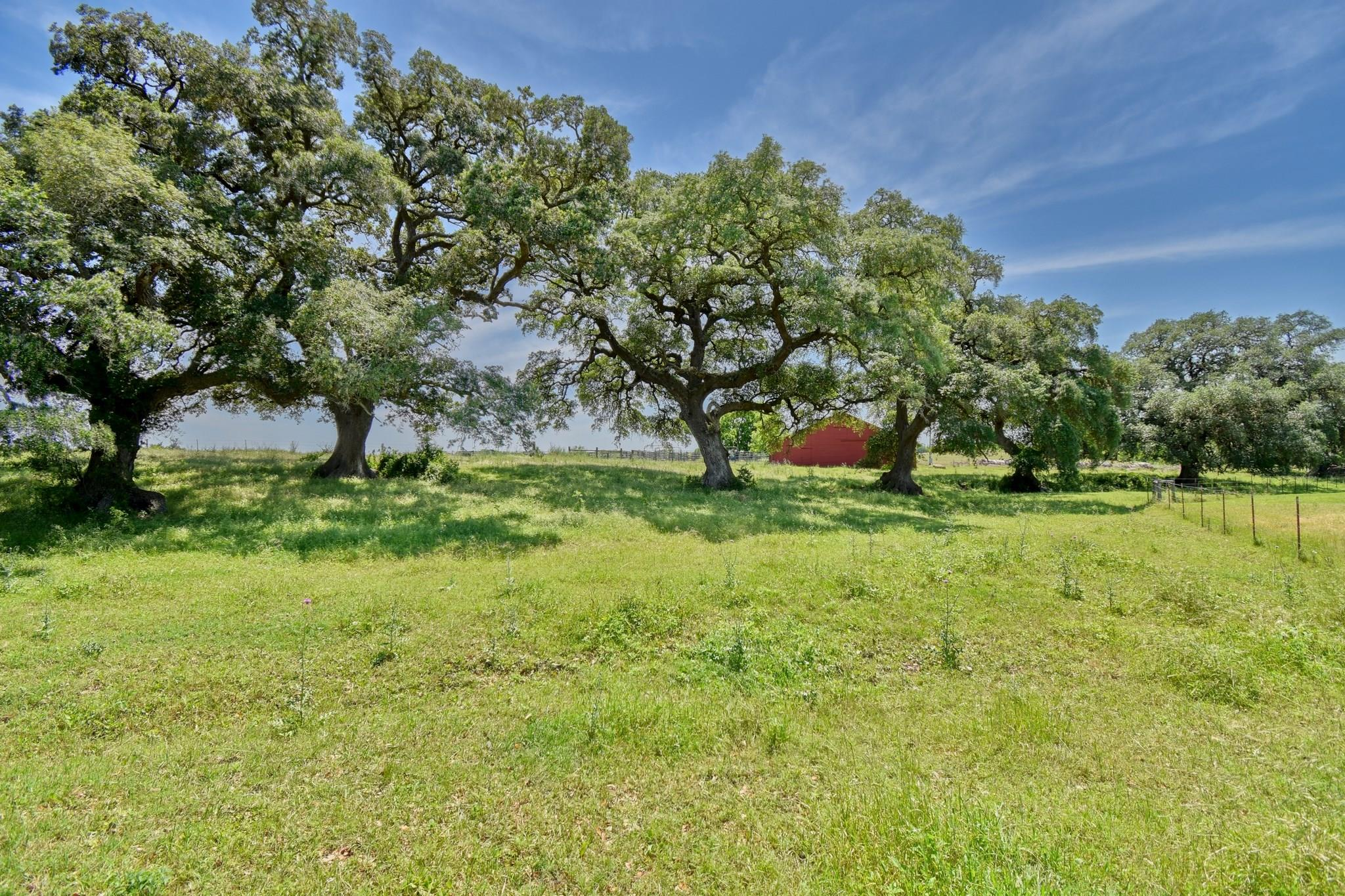 4707 FM 390 Road W Property Photo - Burton, TX real estate listing
