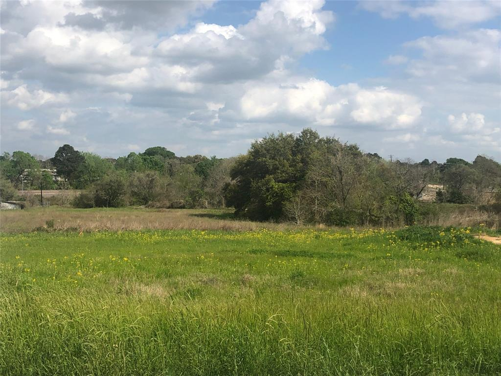 407 North Holland Street, Bellville, TX 77418 - Bellville, TX real estate listing